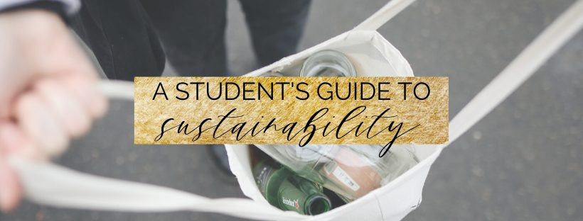 a student's guide to sustainability and zero waste   be eco friendly in college